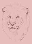 lion speed doodle by nightspiritwing