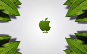 apple by shapshapy
