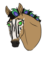 5341- Masked Trouble - Padro by UnknownRidersStable