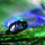 deep blue by illusionality
