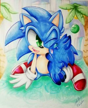 Sonic the Hedgehog and Sonic Chao by Moon--Shield