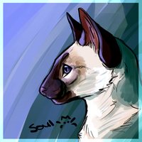 Siamese Icon by Soulphur
