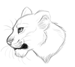 Lioness sketchy headshot by Osayioniwabo