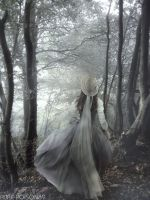.: Into the Woods :. by Pure-Poison89
