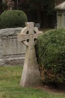 Celtic Cross - 8 by jswis