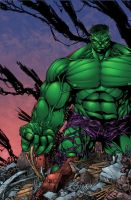 Josh Medors' Hulk Colors by seanforney