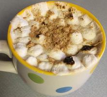 S'mores Mug Cake by TheSkyWeepsAtNight