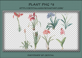 PNG PACK#6 - Plant by Crystallanxi