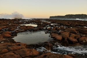 North Avoca rock pool 1 by wildplaces