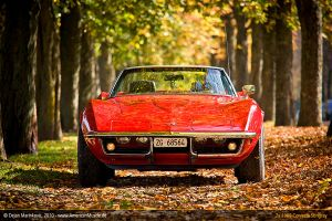 Corvette Autumn III by AmericanMuscle
