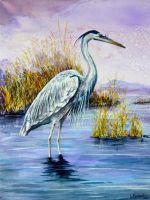 Blue Heron by Tattau
