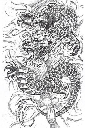 Dragon Tattoos On Back japanese dragon tattoo sleeve tattoo flash on cd
