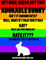 LOVE THE BUNNY by NEWS14
