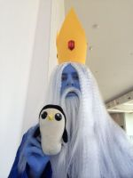 Ice King and Gunter Up Close by ScorpioMonkey