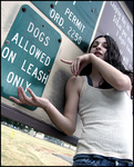 Dogs allowed on leash only by LuvaStudios