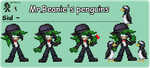 Mr.Beanie's penguins by supersilver27