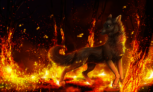 It ends in fire by LiaBorderCollie