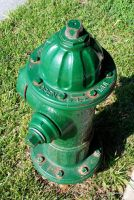 Green Fire Hydrant by DavidMCoyle