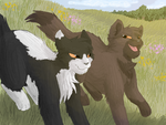 Race you, Wormpaw! by CascadingSerenity