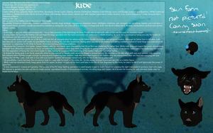 Official Reference: Jude by umbrafen