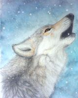 Howling Wolf by Vinzul