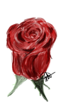 Red Rose Speedpaint by OokamiAikouka