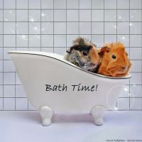 Babies Bath Time by TamarViewStudio