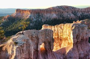 Bryce Canyon 2 by cassaw-creative