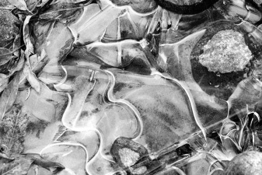 Poudre River Ice by millicent4