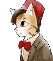 11th Doctor by norang94
