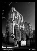 Roach Abbey rld IR31 by richardldixon