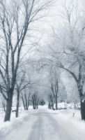 Winter magicland 3 by beyondimpression