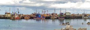 Kalk Bay Harbour by donaldsart