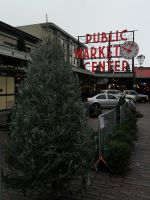 Market Pines by MartyWitch