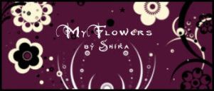 My Flowers by Shiranui