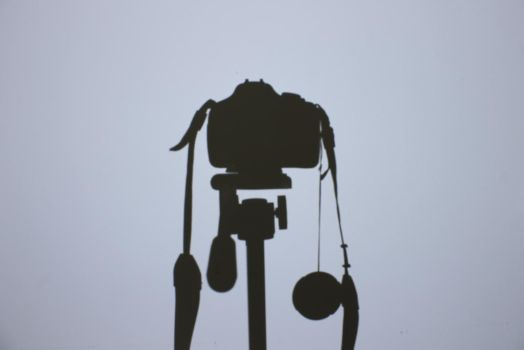 Canon Self-Portrait by Angel6293