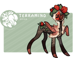 TM2_Terramind_Cardinal Auction CLOSED by griffsnuff