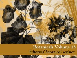 Botanicals Vol 13 by remittancegirl