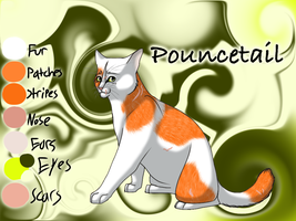 Pouncetail of RiverClan - Waning Moon by Jayie-The-Hufflepuff