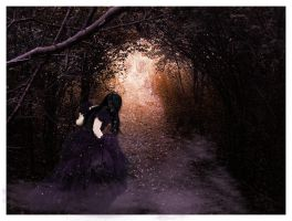 the road less traveled by natyismyhero