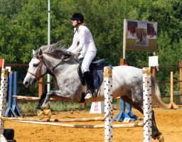 Show jumping by Hechicero