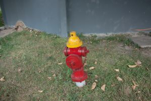 FireHydrant 01 by 2011991