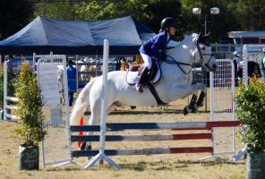 STOCK Canungra Show 2013-32 by fillyrox