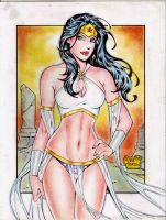 WONDER WOMAN by RODEL MARTIN (11232015)C by rodelsm21