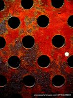 grate... by iangrahamimages