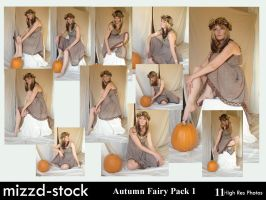 Autumn Fairy Pack 1 by mizzd-stock