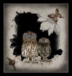 Steampunk Owls by saperlipop