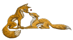 Two Foxes by eagle-flyte
