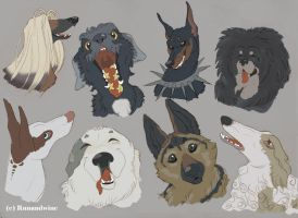 My Favorite dog Breeds by runandwine