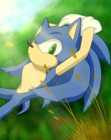 Un-descanso-sonic-123 by alice-werehog